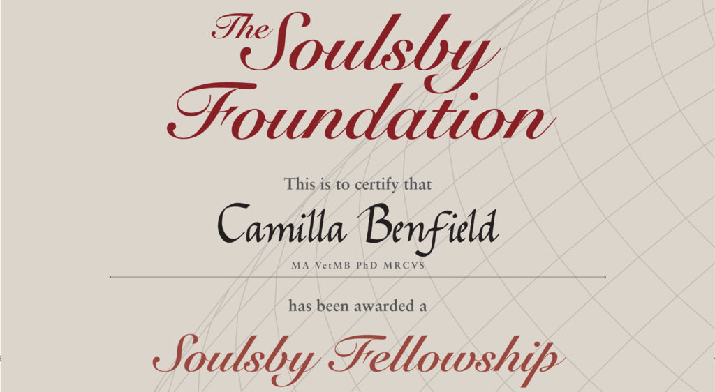 Soulsby Foundation Fellowship Certificate