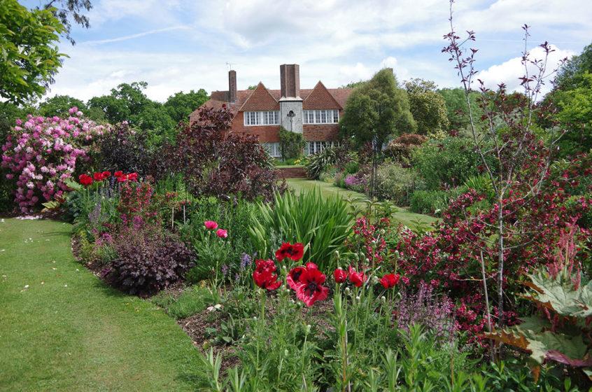 boldshaves garden